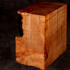 Big Leaf Maple Cluster Burl Turning Blank, SJMA105