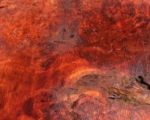 Cottonwood Slab, CHL071515-1