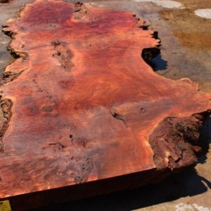 Cottonwood Slab, CHL071515-1