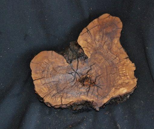 Olive Wood Blank, KC072708