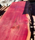 PURPLE Giant Sequoia Windfallen Redwood Slab, FW082415-03