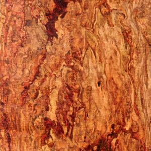 Pecan Slab with Burl Cluster, DC093015-2