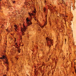 Pecan Blank with Burl Cluster, DC093015-3