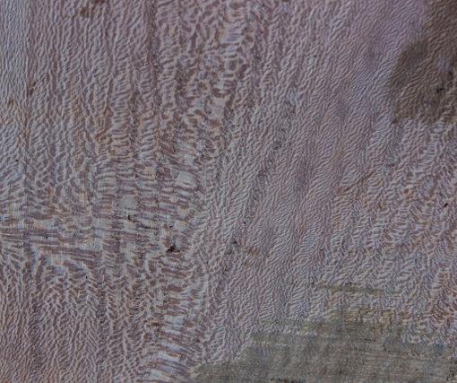 Sycamore Small Slab Triangle, FW13554