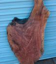 Redwood Root Art, FW022413