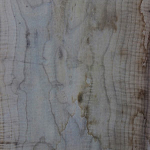 Myrtle Wood Slab, FW5835