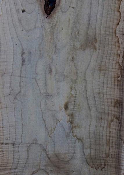 Myrtle Wood Slab, FW5835