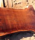 California Walnut Slab, CHL100915-1
