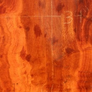 Sycamore Wood Slab, DP915-02