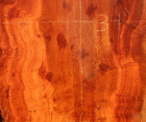 Sycamore Wood Slab, DP915-02