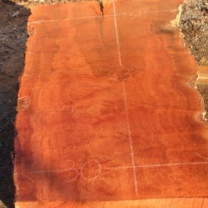 Sycamore Wood Slab, DP915-03