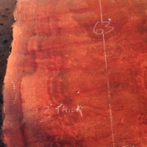 Sycamore Slab, DP915-04