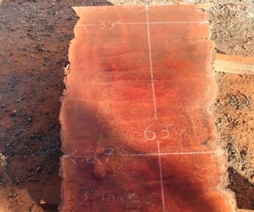 Sycamore Table Slab, DP915-05