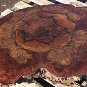 Walnut Burl Round, GM121515-6