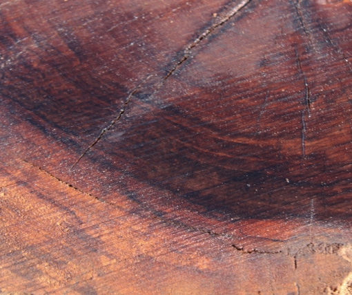 Claro Walnut Burl Round, GM121515-8