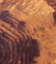 California Claro Walnut Round Slab, GM121515-11