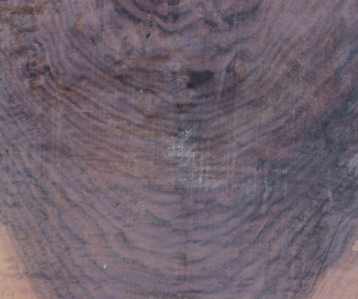 Walnut Small Slab, FW032816-2