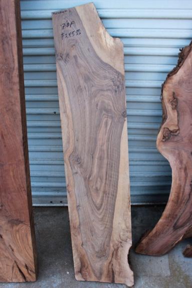 Walnut Slab Sanded and Dry, FW032816-6