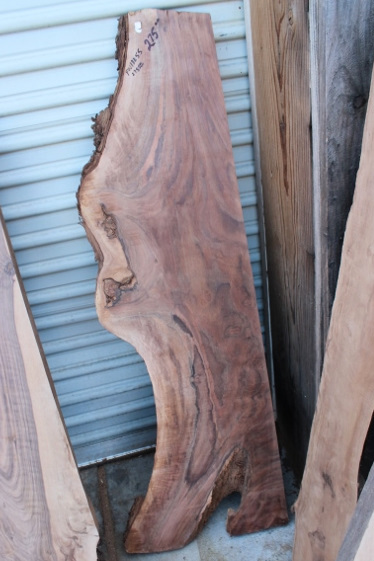 Claro Walnut Slab, FW13255