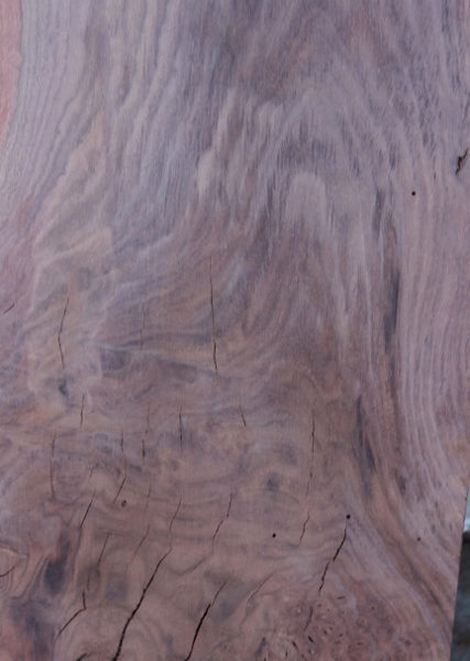 Walnut Slab Ready, FW032816-7