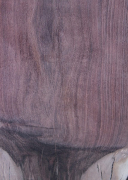 Walnut Slab with Graft Line, FW032816-9