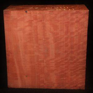 eucalyptus fw111014-77