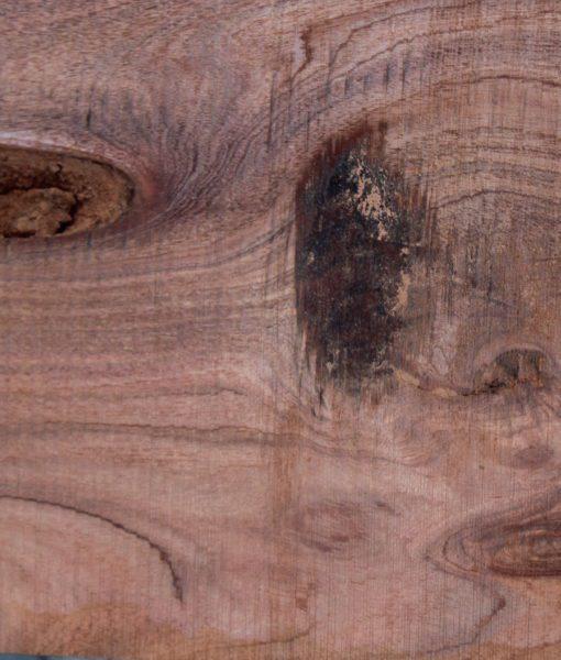acacia-slab-close fw011617-06