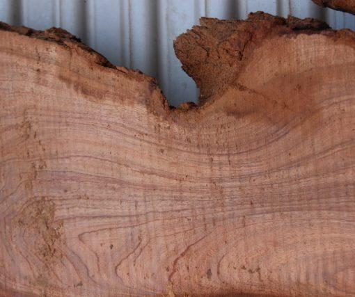acacia-slab-close up fw011617-14