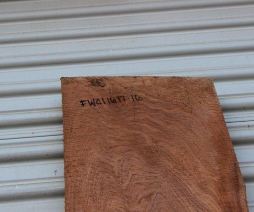 acacia slab fw011617-16