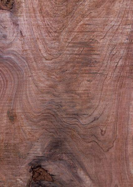 acacia wood close up
