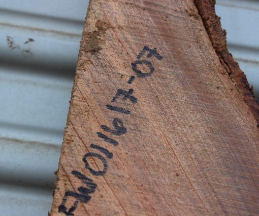 acacia wood fw011617-07