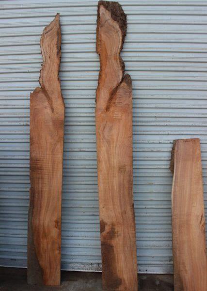 acacia -wood-fw011617-10