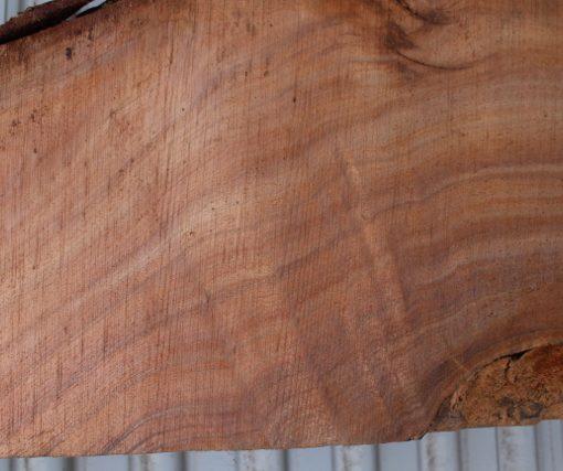acacia wood-slab-fw011617-09