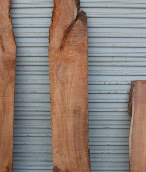 acacia-wood-slab fw011617-10