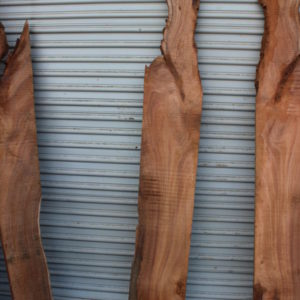 acacia wood, ununiform shape