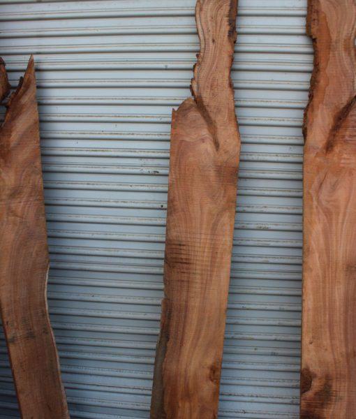 acacia wood, ununiform shape