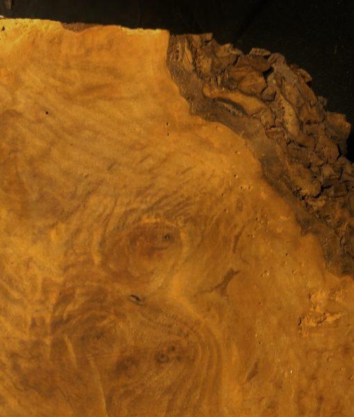 claro-close up fw13284