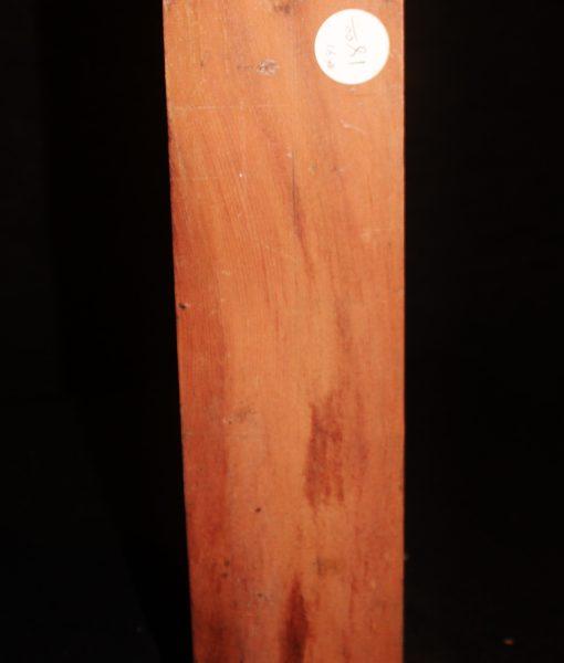 giant sequoia redwood fw10734-41