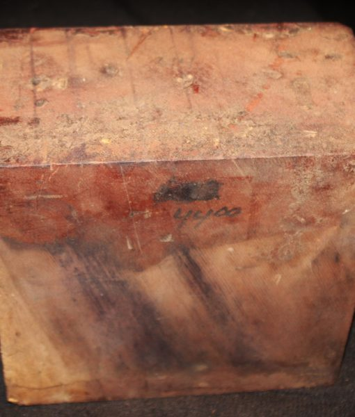 giant sequoia redwood fw10734-44