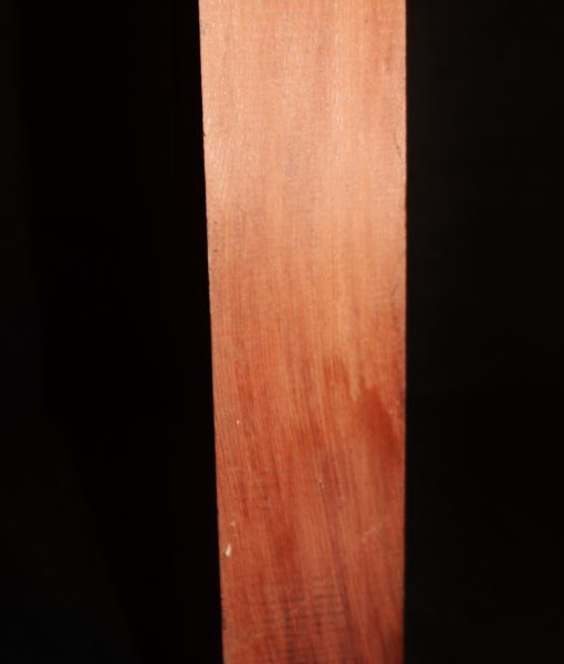 giant-sequoia-redwood fw10734-72