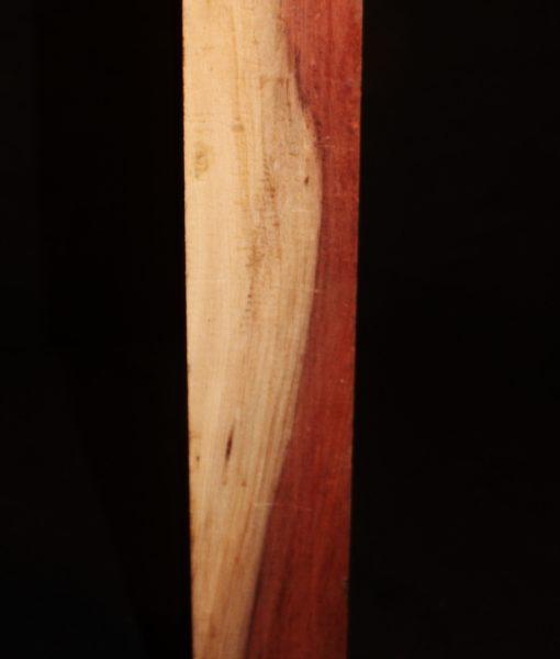 giant sequoia redwood fw10734-72