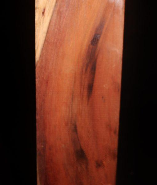 giant-sequoia-redwood fw111014-41