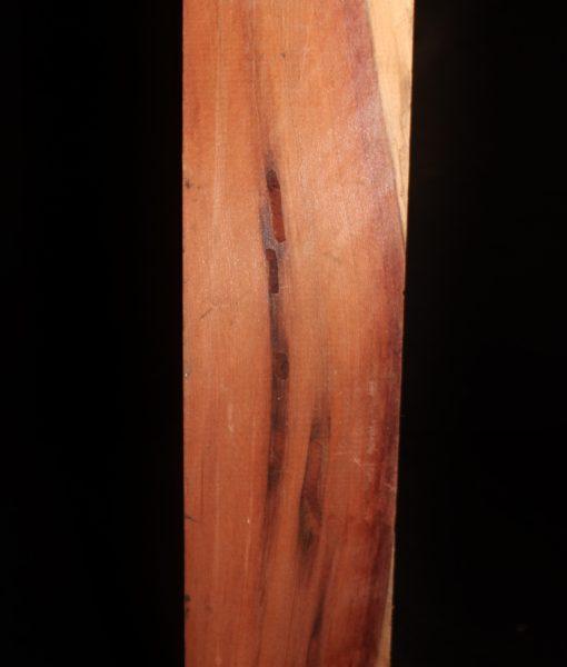 giant-sequoia-redwood-turning-block fw10734-41