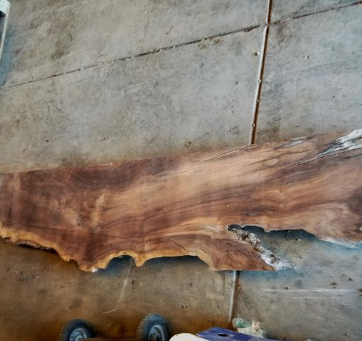 walnut thick slab showing rustic length