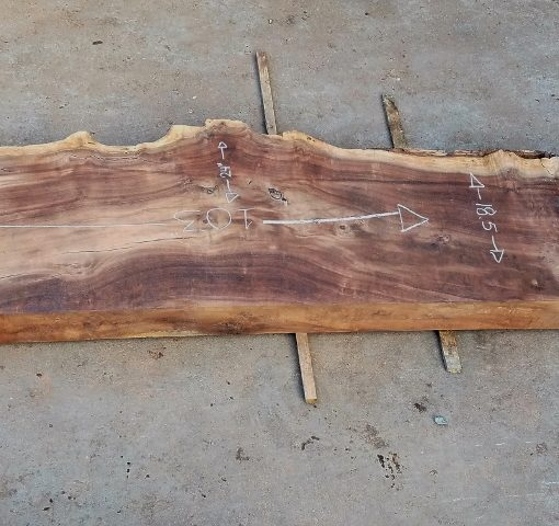 Walnut thick slab showing mid area at the widest point