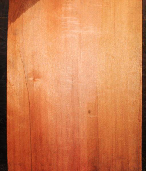 giant-sequioa board fw13311