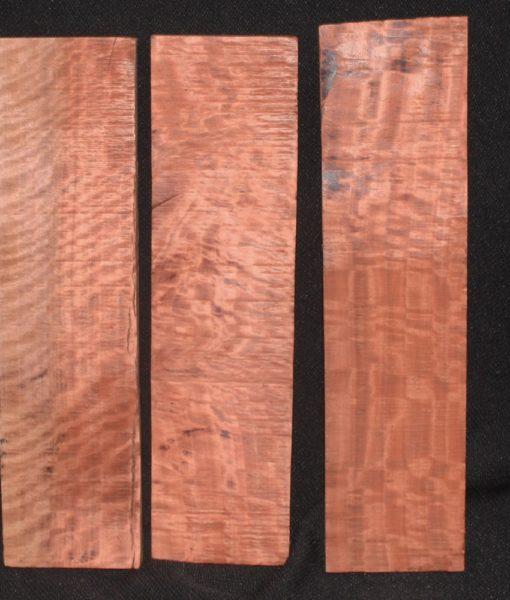 red gum eucalyptus