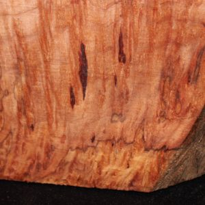 giant sequoia red-wood turning-block